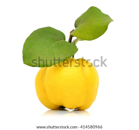 Ripe quince isolated on white