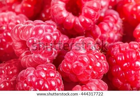 ripe raspberries. Red juicy berries closeup. Macro. Background of the berries. Stock photos. - stock photo