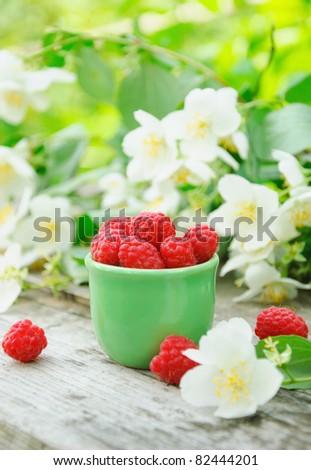 Ripe raspberry and jasmine - stock photo