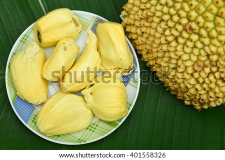 Ripe Raw jack fruit cut open, Kerala India. Tropical fruit Jack fruit (jakfruit, jak).Golden Yellow fruit and Jack-fruit peel a small button consecutive yellowish green pattern. fruit with thorns
