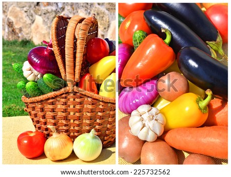 Ripe, raw vegetables in the picnic basket in the nature. Collage - stock photo