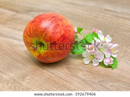 ripe red apple and blossoming branch of apple on wooden background. horizontal photo. - stock photo