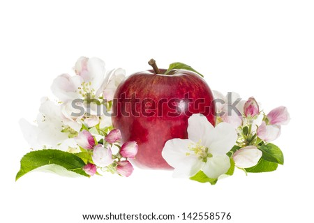 Ripe Red Royal Gala Apple with Blossom and Leaves on White Background - stock photo