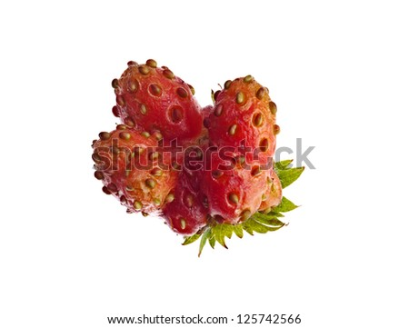 Ripe strawberries mutant isolated on a white table - stock photo