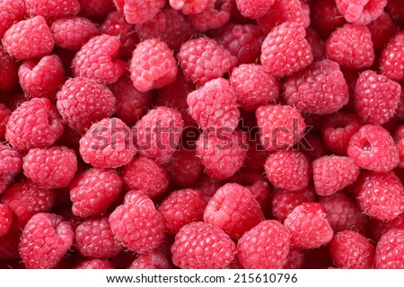 Ripe sweet raspberries close-up - stock photo
