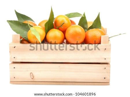 Ripe tasty tangerines with leaves in wooden box isolated on white - stock photo