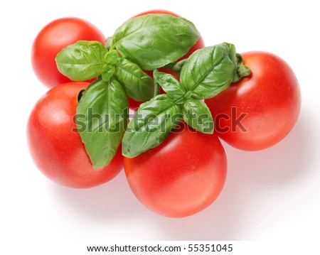Ripe tomatoes and basil on a white background - stock photo