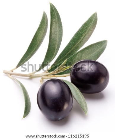 Ripe two black olives with leaves on a white background.