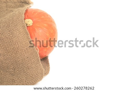 Riped orange pumpkin partially wrap by agriculture used sack over white background - stock photo
