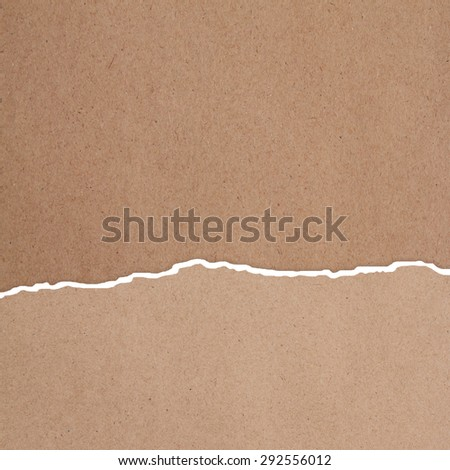 Riped paper background - stock photo