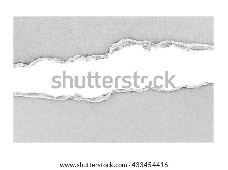 Ripped paper on white, space for copy - stock photo