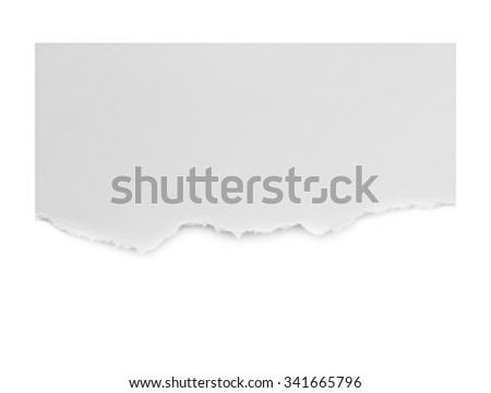 Ripped paper, space for copy on white background.