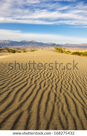 Rippling golden sand of Mesquite Flat Dunes, Death Valley