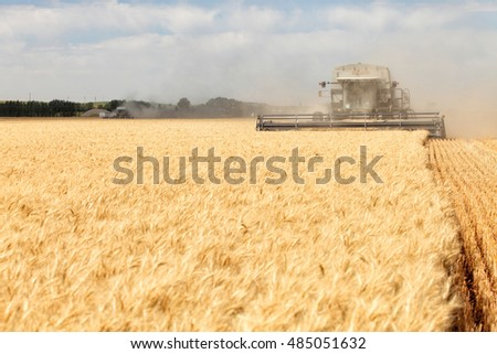 Ririe, Idaho, USA July 10, 2011, A combine harvesting hard red wheat in the fertile farm fields of Idaho.