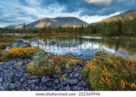 Rischorr mountain reflection in shallow Polygonal northern taiga forest lake with rocks and dwarf birch trees - stock photo