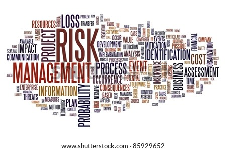 Risk management concept in tag cloud isolated on white - stock photo