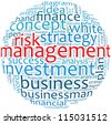 Risk Management in word collage - stock photo