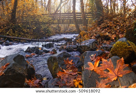 River and old Wooden bridge in an autumn mood