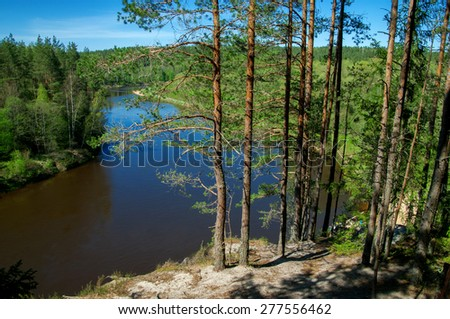 River and pines - stock photo