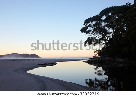 River at ocean beach and eucaliptus forest at daybreak - stock photo