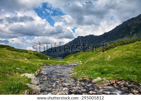 River high in mountains with shores covered with green grass in summer time