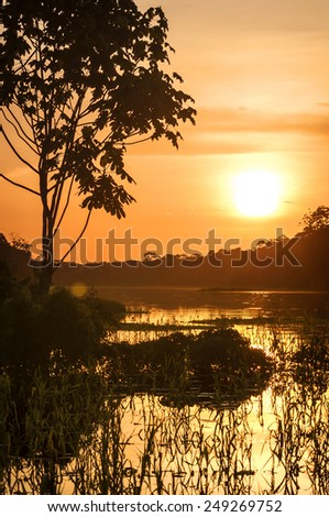 River in the Amazon Rainforest at dusk, Peru, South America  - stock photo