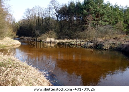 river in the forest in Poland