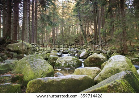 River in the Polish forest. Mountain rocks covered with moss - stock photo