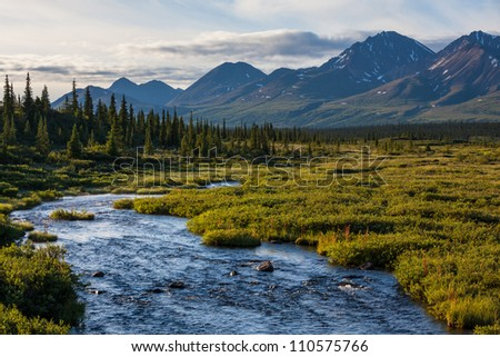 river in  tundra of Alaska