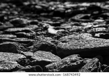river shore rocks in black and white - stock photo