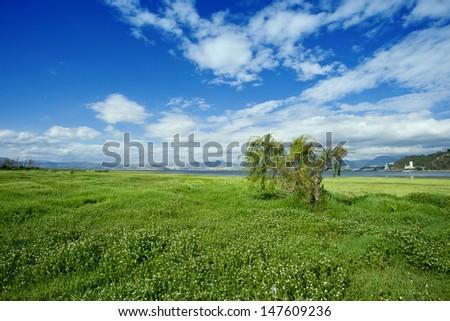 river side under blue sky in summer season - stock photo