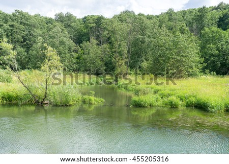 River valley with forest on riverside. Moscow, Russia.