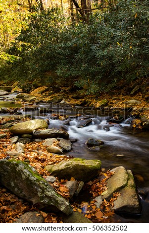 River with autumn leaves and mossy rocks Smoky Mountains National Park vertical
