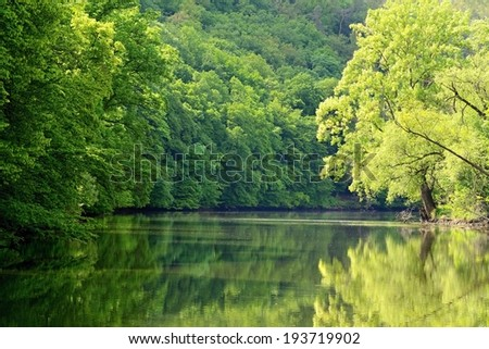 river with trees Svratka-Brno-Czech republic. - stock photo