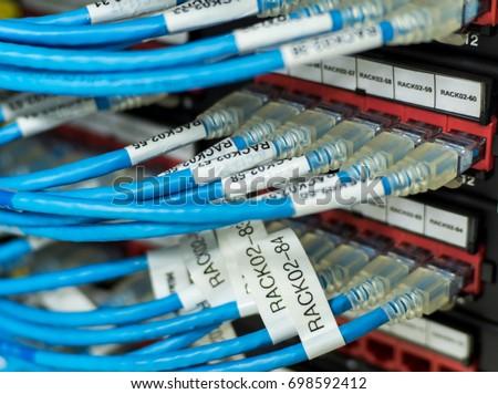 RJ 45 CAT 6 UTP Blue Ethernet Cables Stock Photo (Download Now ...