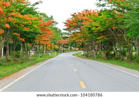 Road among colorful trees on the way to mountain - stock photo
