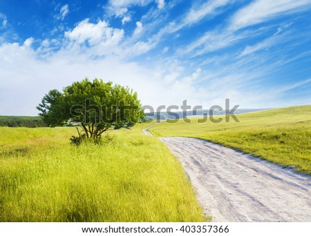 Road amongst green meadow and evening sky - stock photo