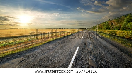 Road and field of wheat near the forest - stock photo