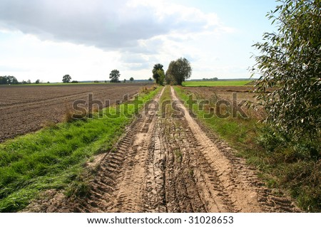 road, country-side in Poland