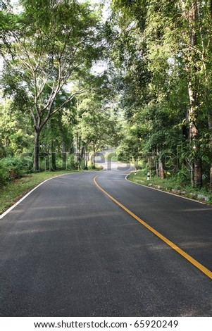 road curve in rain forest. - stock photo