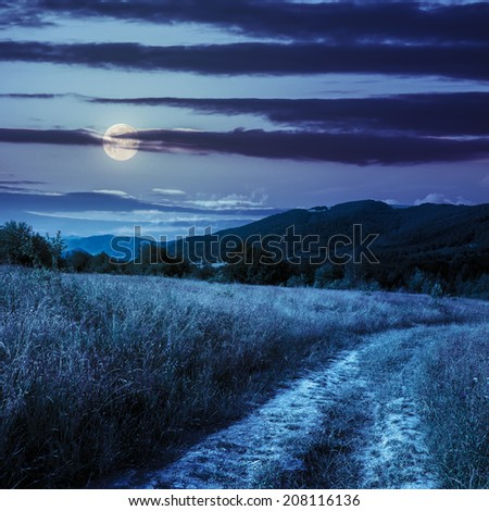 road going into mountains and passes through the green shaded forest in the field at night in full moon light - stock photo