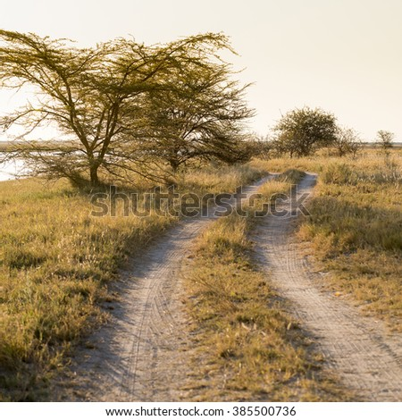 Road in Africa winding toward the sunset - stock photo