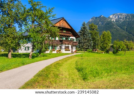 Road in alpine village in summer near Hallstatt, Austria - stock photo