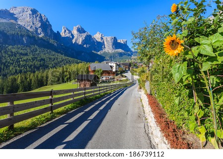 Road in alpine village with yellow sunflowers in bloom, Colfosco, Dolomites Mountains, Italy - stock photo