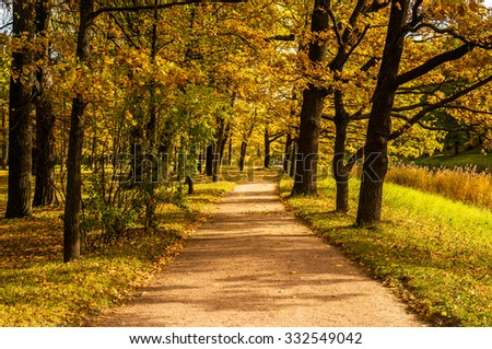 Road in autumn catherine park in the sunny morning  - stock photo