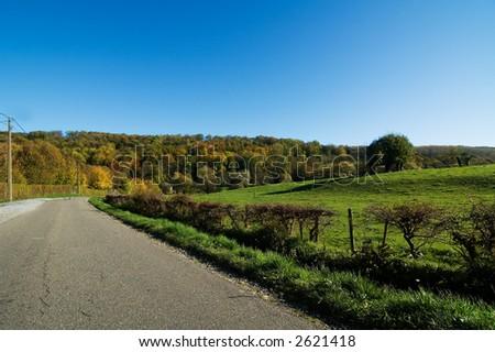 Road in beautiful scenery - stock photo