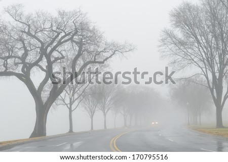 Road in foggy winter morning - stock photo