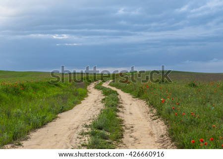 Road in green field and sky with clouds