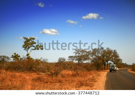 Road in Kruger National Park, South Africa - stock photo