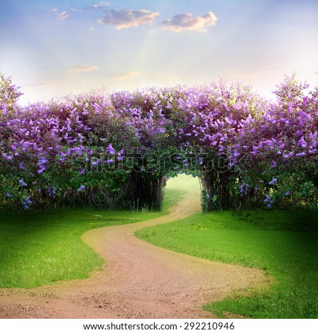 Road in magic spring forest  - stock photo